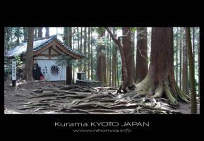 Tree roots at Kurama by Lou-NihonWa