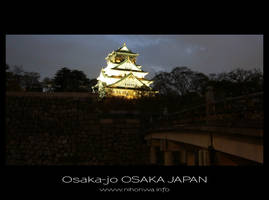 Osaka-jo by night -1- by Lou-NihonWa