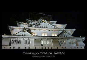 Osaka-jo by night -2- by Lou-NihonWa