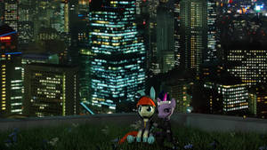 Night on the green roof