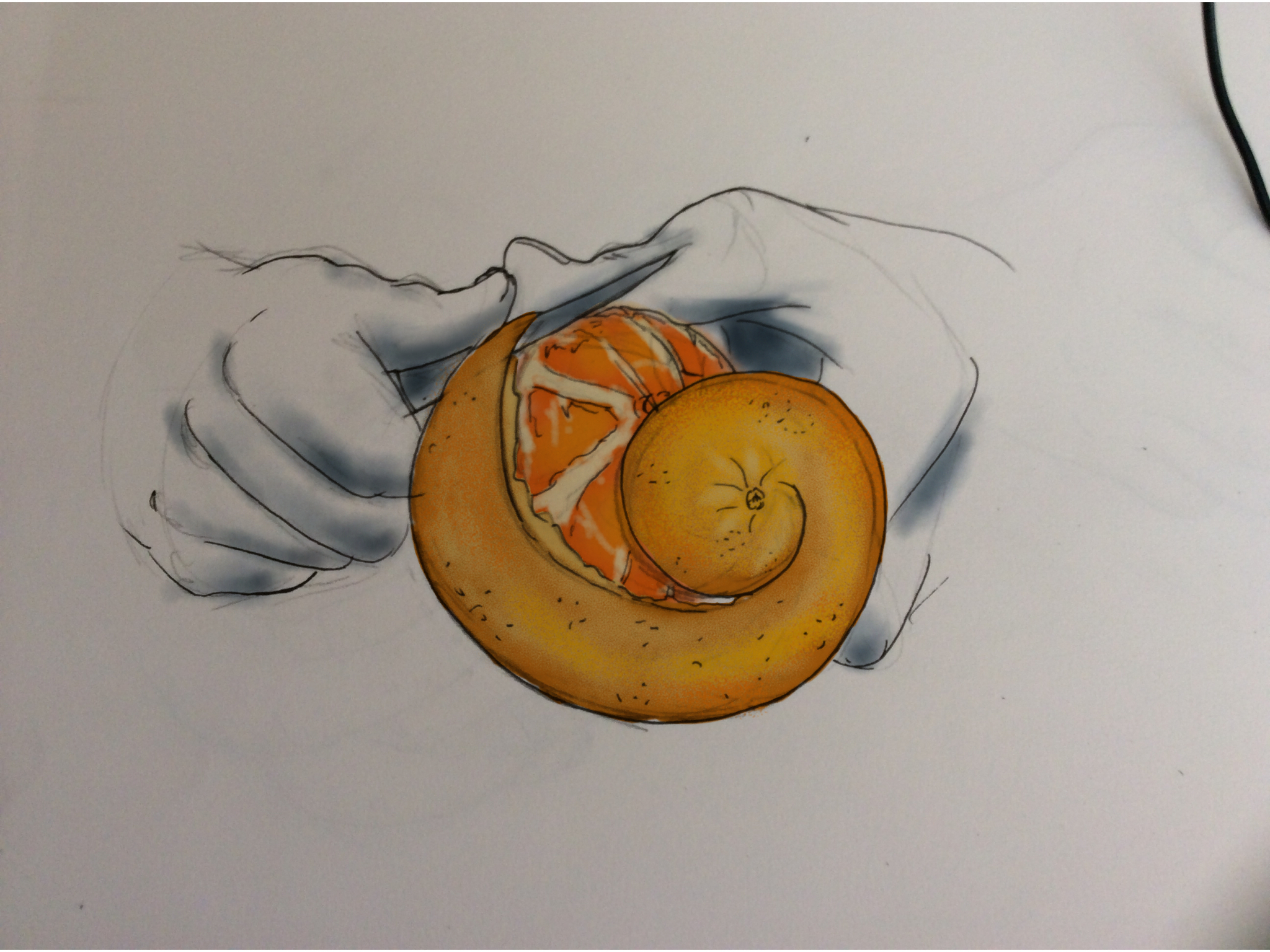 Peeling the orange by InPBo