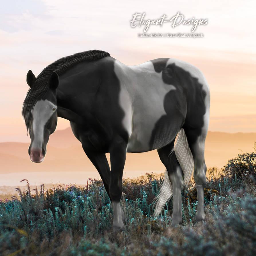 HEE Horse Avatar   Mystery