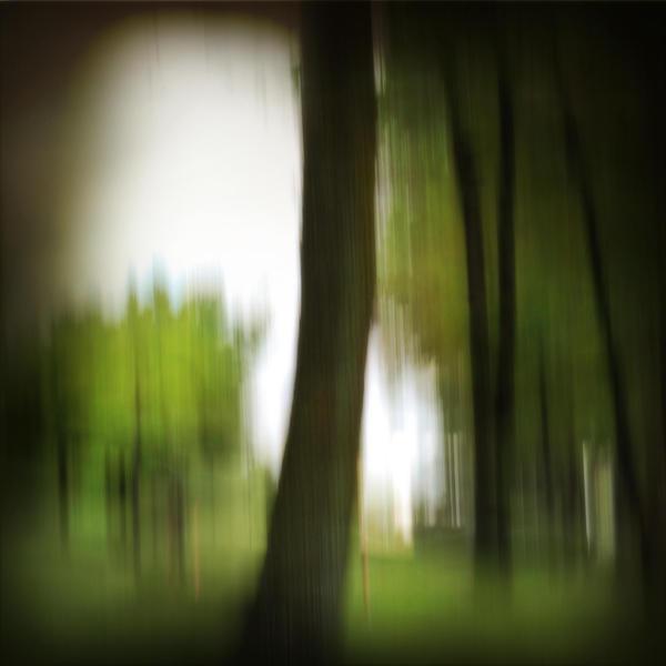whisper woods 1 by privatedanser