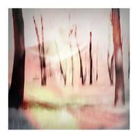 whisper woods 4 by privatedanser