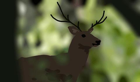 oh deer! by requestedRerun