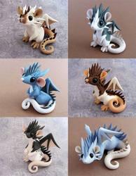 Dragon Rats