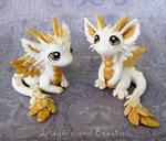 Baby Angel Dragons