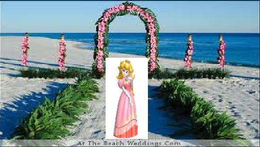 Peach At A Flower Beach by princesszelda011