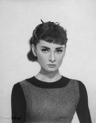 Audrey Hepburn Pencil Drawing