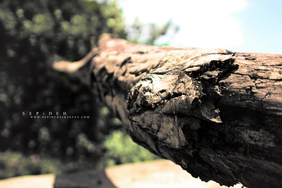 Causeless alone by Sepinik