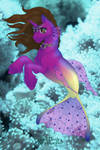 Nicki the sea pony