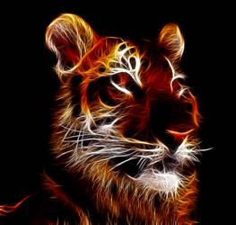 Tiger Fractal by levydesign
