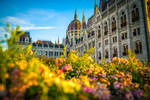 budapest eve iv by hannes-flo