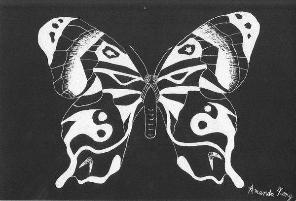 Butterfly scratchboard - photo#24