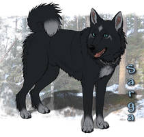 Friendly Hunter by Zerwolf
