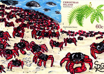Christmas Island Crabs Stamp Card
