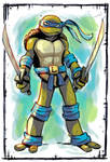 Ninja Turtles: Leonardo color