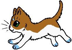 Kitten for Natalia-Clark by TwilightLuv10