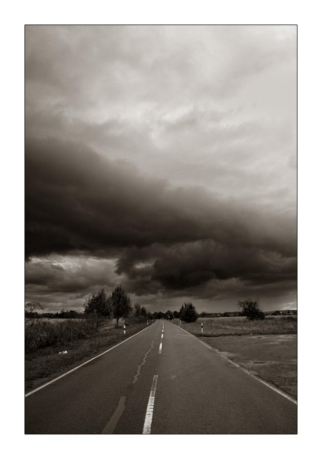 the road to knowhere by toko
