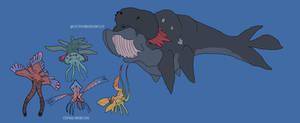 Marine Life of Kos