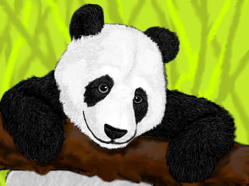 Giant Pandacubbysilverdog