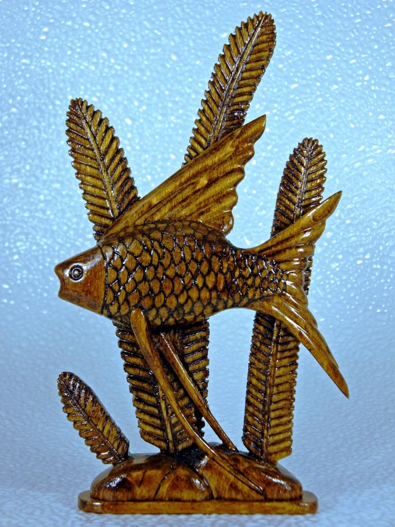 Goldfish by dkart71