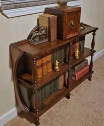 Bookshelf 2 by dkart71