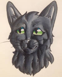 Hollyleaf by TheSecondRachel