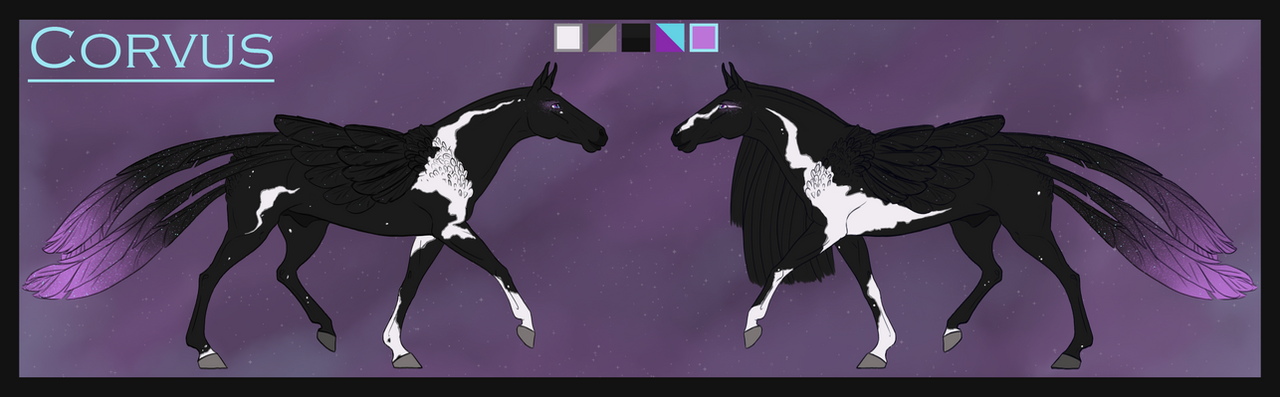 Reference | Corvus by BuffyandBramble