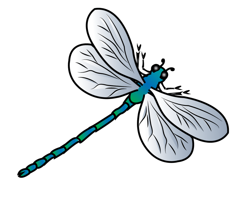 dragonfly vector by jscollon on deviantart rh jscollon deviantart com dragonfly vector art free dragonfly vector images