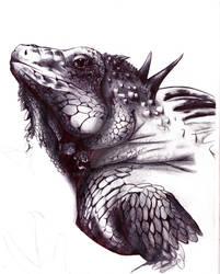Iguana work in progress by swayziea