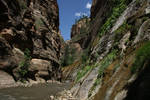 Hiking into the Narrows, Zion National Park