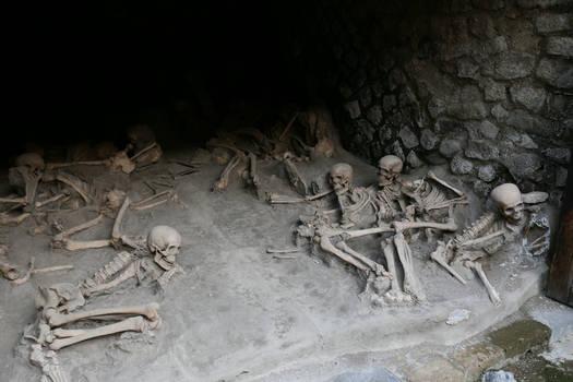 Herculaneum Human Remains