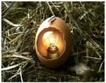 Archimedes' Egg