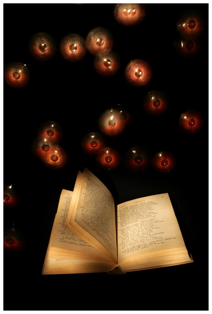 The reading lesson by Malgorzata-Skibinska