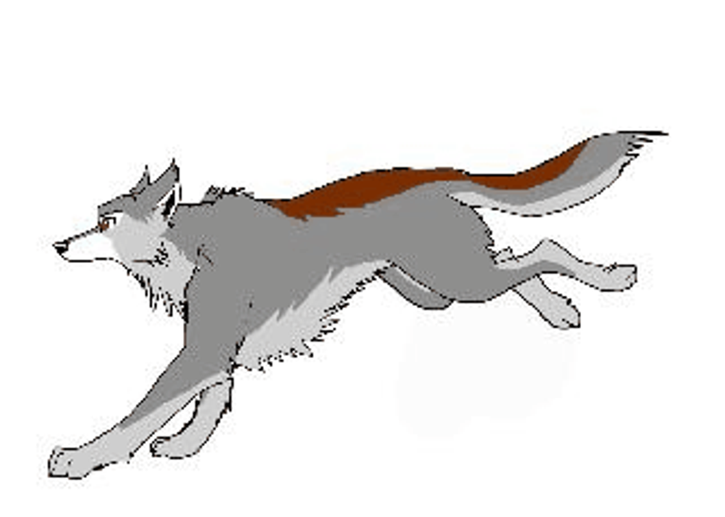 Wolf Running Drawing Crazywidowfo