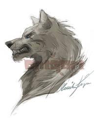 Wolf WIP by MonikaKryza