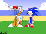 Look at me, Sonic! I'm a merry-go-round! by AldrineRowdyruff