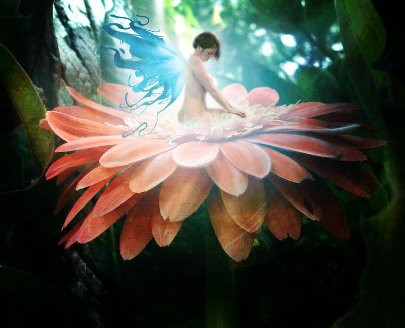 Flower_Fairy_by_Dandelion_lion