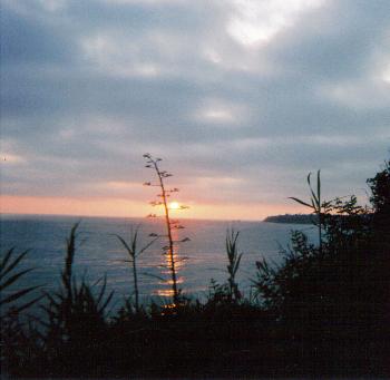 Sunset in California by VampirePumpkins
