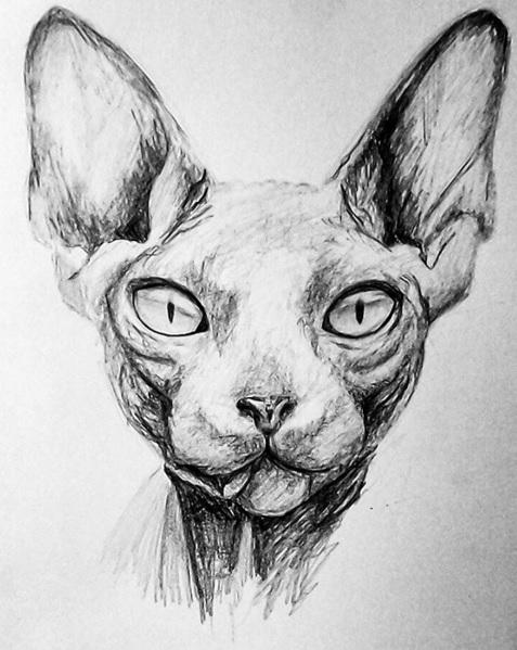 Sphynx By Nikostiel On DeviantArt