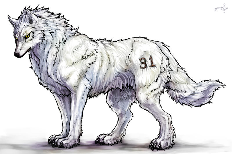 Big Wolf Commission by yuumei