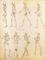 Single Ladies Skeleton Study