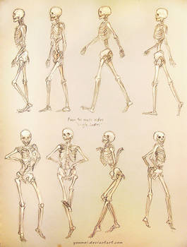 Single Ladies Skeleton Study