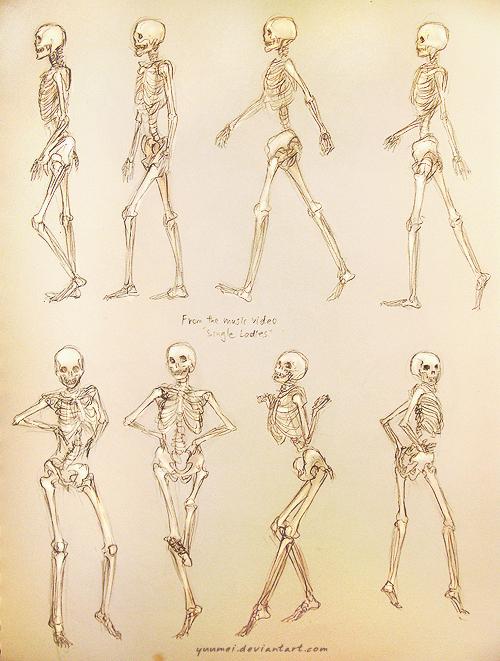 Single Ladies Skeleton Study by yuumei