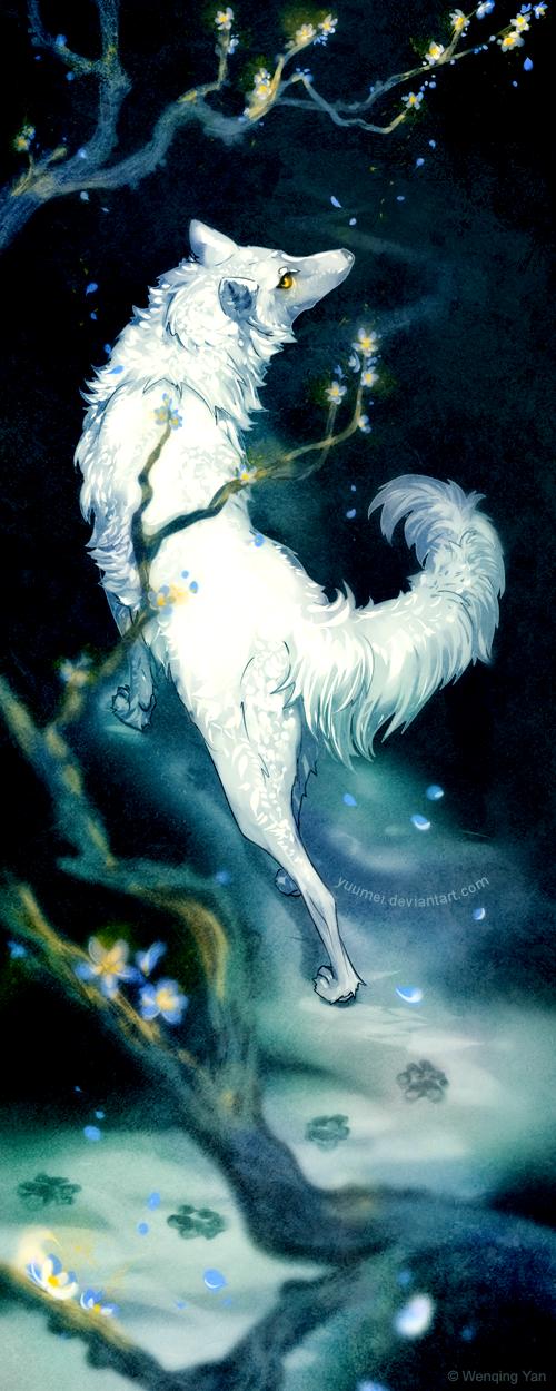 Wanderer by yuumei
