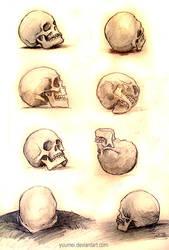Skull Studies by yuumei