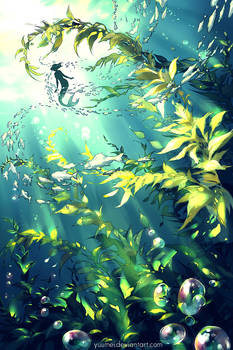 Forest of the Sea