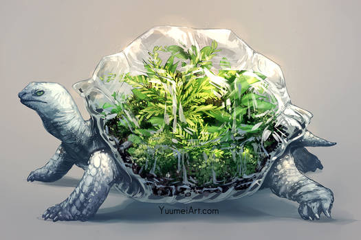 Worlds Within: Tortoise Terrarium