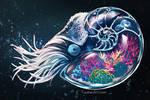 Shelter Within: Nautilus Reef Tank